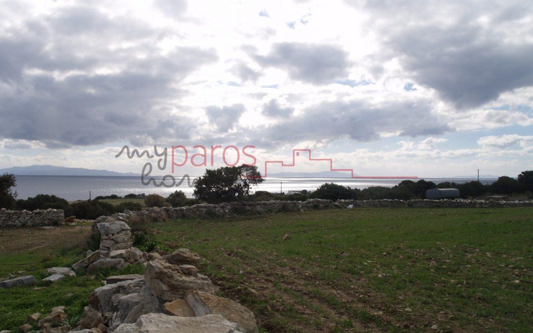 Γ354  ΑΓΡΟΤΕΜΑΧΙΟ  ΣΤΗ ΘΕΣΗ ''ΠΟΥΛΟΣ'' ΤΟΥ ΑΣΠΡΟΥ ΧΩΡΙΟΥ-ΠΑΡΟΥ